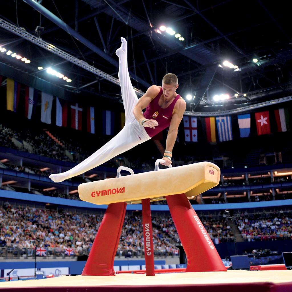 competition pommel horse genuine leather covered body fig