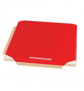MAT FOR SCHOOL - PVC COVER - WITH ATTACHMENT STRIPS AND REINFORCED CORNERS - 200 x 100 x 4 cm
